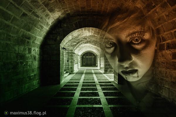 https://s28.flog.pl/media/foto_middle/13549314_strach-przed-ciemnoscia.jpg